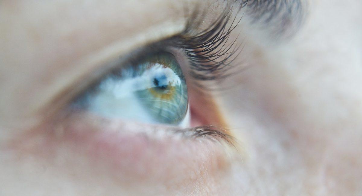 Une exposition intensive à la lumière bleue des écrans peut-elle favoriser l'apparition de pathologies oculaires comme la DMLA ou la cataracte ?