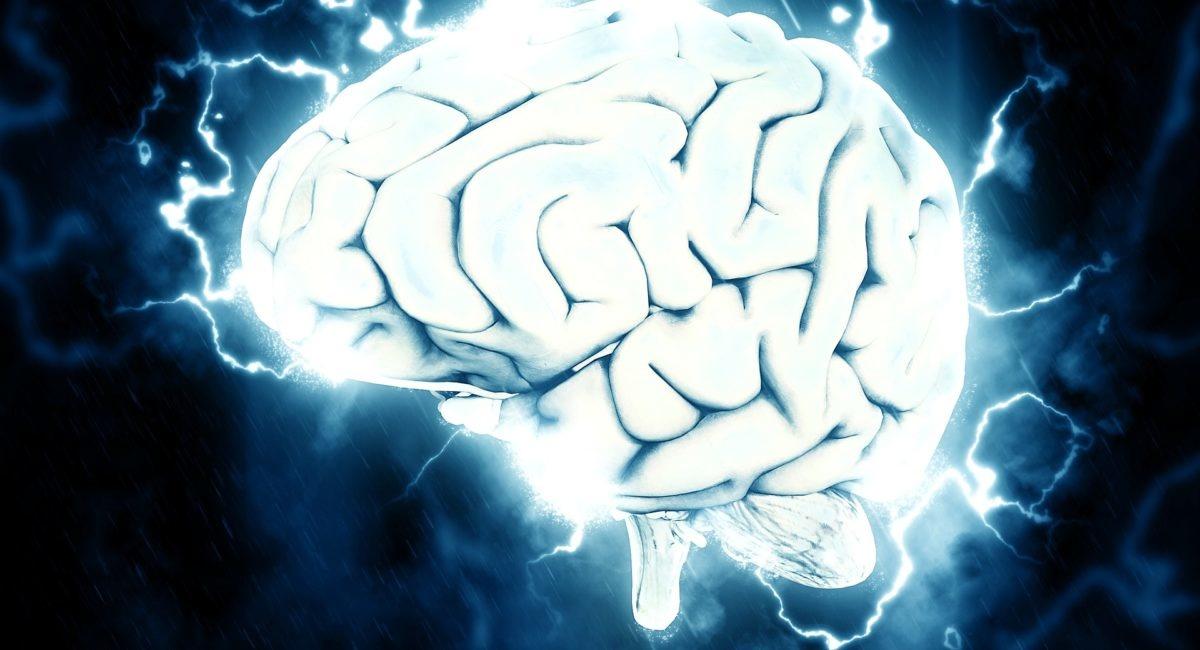 Un usage modéré des écrans peut-il avoir un impact positif sur notre activité cérébrale ?