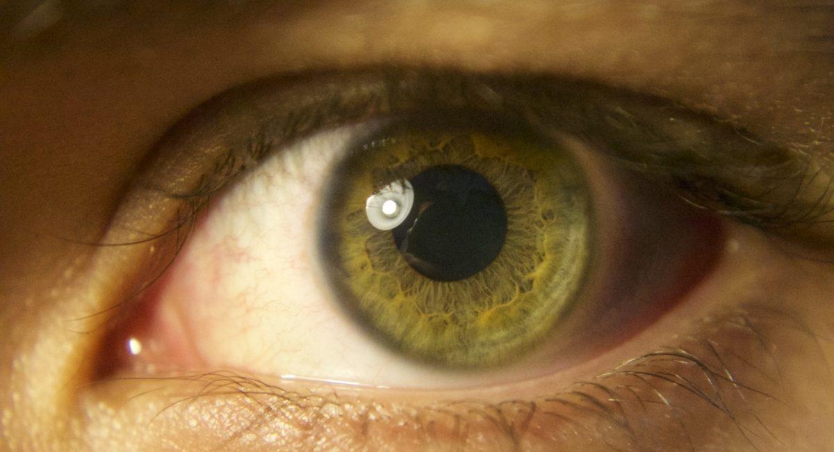 Lumière bleue et impact sur le sommeil : de nouveaux éléments d'explications